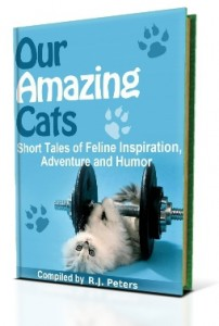 Our Amazing Cats book